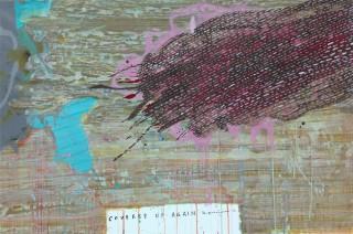 Milenko Prvacki, Covered up again, 2012, acrylic on linen,70X114cm